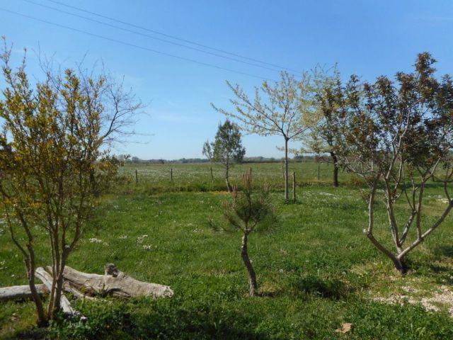 Terrain à vendre sur Arles