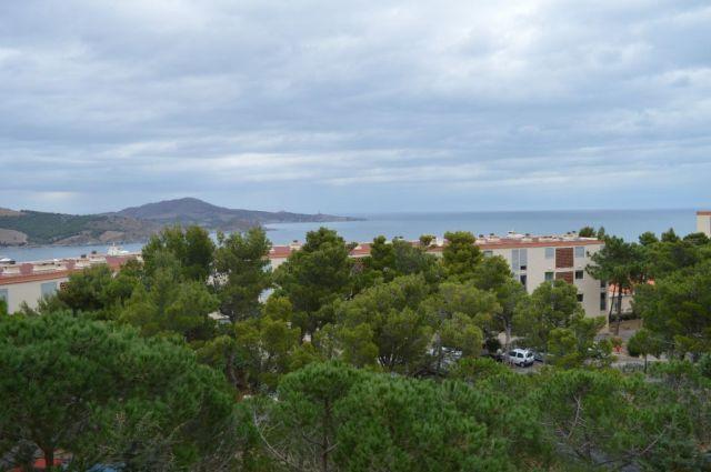 Appartement à vendre sur Banyuls Sur Mer