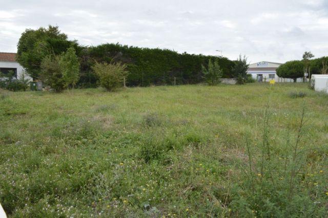 Terrain à vendre sur Saint Pierre D'oleron