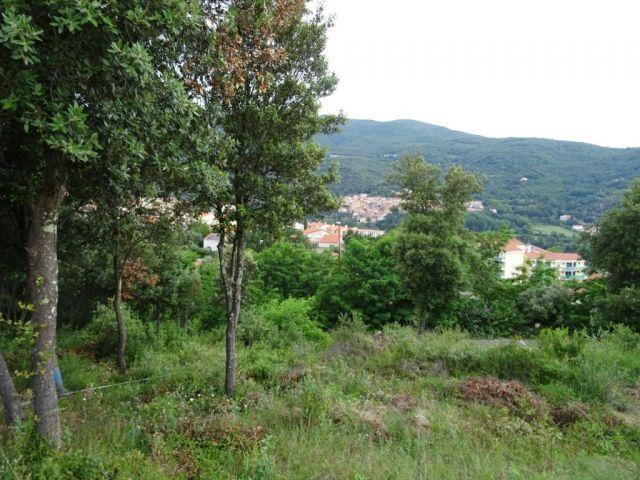Terrain à vendre sur Amelie Les Bains Palalda