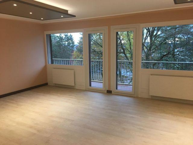 Appartement à louer sur Bellegarde/valserine