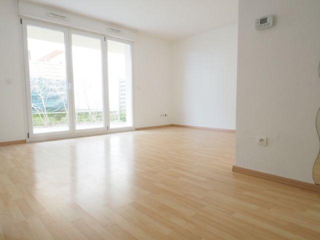 appartement à louer sur rhinau