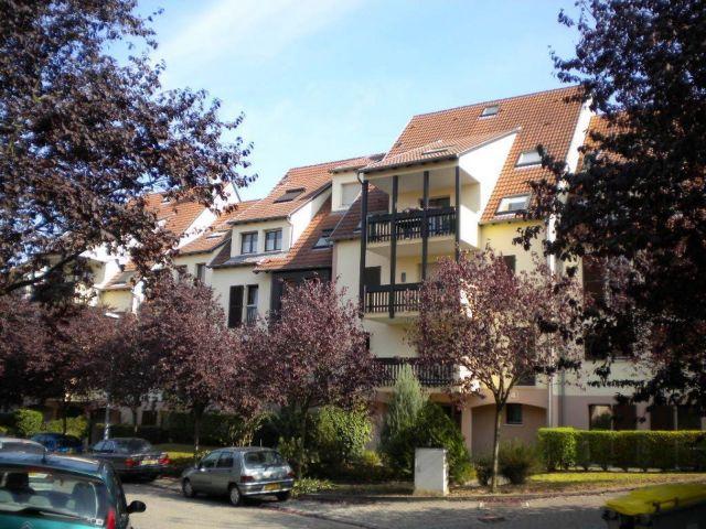 appartement à louer sur lingolsheim